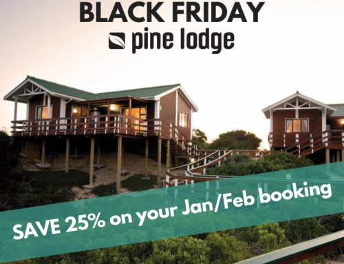 Black Friday Accommodation in Port Elizabeth